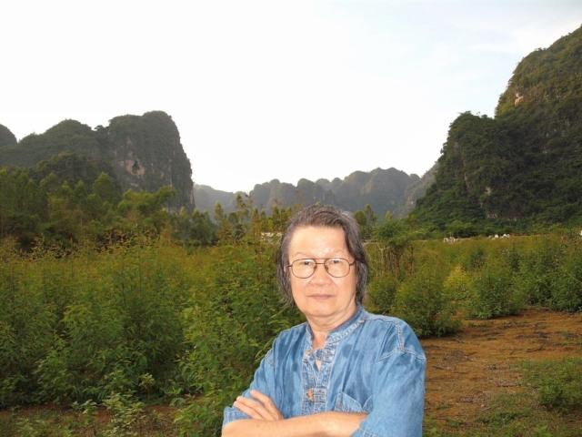 Trần Hoài Dương, 2010